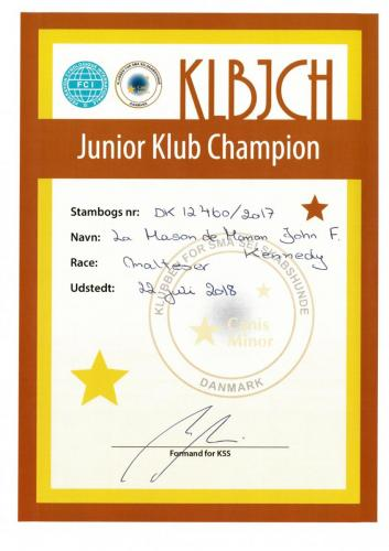 Club Junior Champion