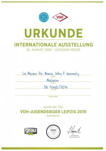 VDH-Junior-Winner Leipzig 2018