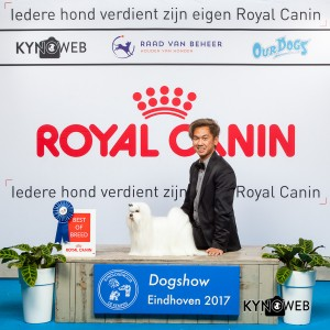 2112 EINDHOVEN 2017 Kynoweb Kynoweb-Ernst-von-Scheven 20170205 14 38 04