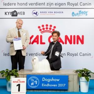 G 9 1 EINDHOVEN 2017 Kynoweb Kynoweb-Ernst-von-Scheven 20170205 16 48 48