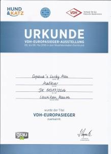 VDH European Winner 2016