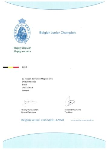 Belgian Junior Champion