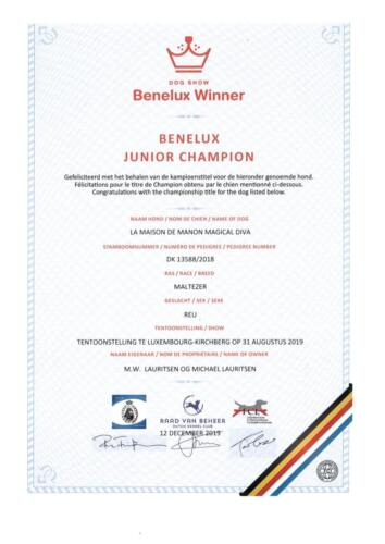 Benelux Junior Champion