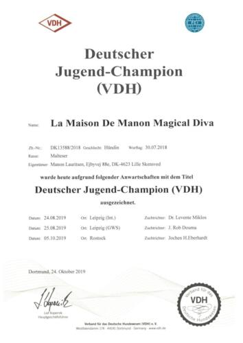 VDH Junior Champion